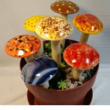 Fused Glass Mushrooms Inspiration Kit