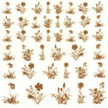 Low Fire 22K Gold Decals  Flowers