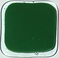 Youghiogheny Kelly Green Opal Fusible Glass 96 COE